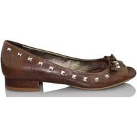 Sapatos Mulher Escarpim Paco Herrero MADEIRA CIOCCO MARRON