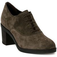 Sapatos Mulher Richelieu Frau SOFTY VISONE Marrone