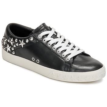 Sapatos Mulher Sapatilhas Ash DAZED Preto