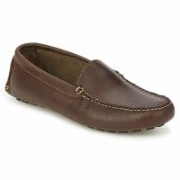 Sapatos Homem Mocassins Sebago LIMEROCK Café