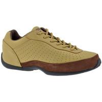 Sapatos Homem Sapatilhas de cano-alto Dr Martens  Bege