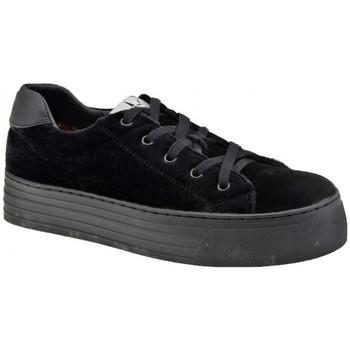 Sapatos Mulher Sapatilhas F. Milano  Preto
