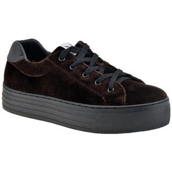 Sapatos Mulher Sapatilhas F. Milano  Castanho