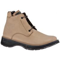 Sapatos Homem Sapatos de caminhada Nex-tech  Bege