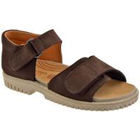 Sapatos Criança Sandálias Elefanten  Castanho