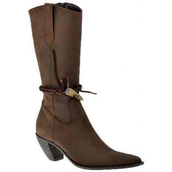 Sapatos Mulher Botins Nci  Castanho