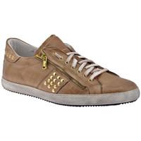 Sapatos Homem Sapatilhas Exton  Bege