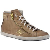 Sapatos Homem Sapatilhas de cano-alto Exton  Bege