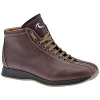 Sapatos Homem Sapatilhas de cano-alto Docksteps  Multicolor
