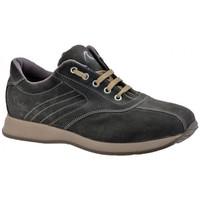 Sapatos Homem Sapatilhas de cano-alto Docksteps  Cinza