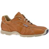 Sapatos Homem Sapatilhas de cano-alto Docksteps  Bege