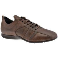 Sapatos Homem Sapatilhas de cano-alto Docksteps  Castanho