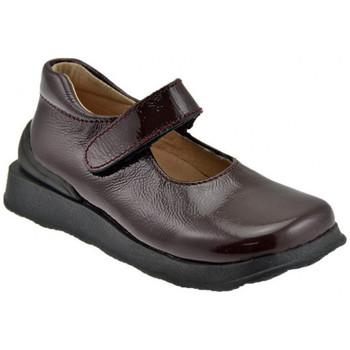Sapatos Criança Sabrinas Naturino  Castanho
