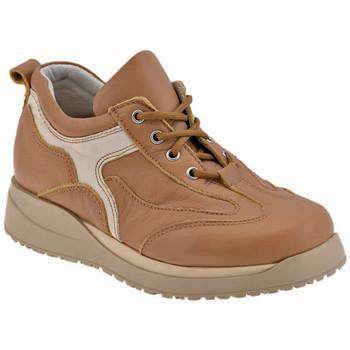 Sapatos Rapaz Sapatos Chicco  Castanho