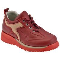 Sapatos Criança Sapatilhas de cano-alto Chicco  Vermelho