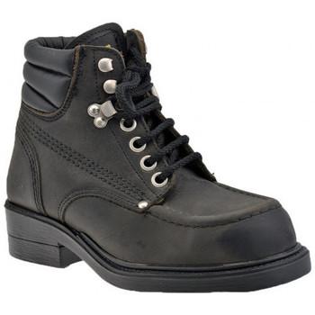 Sapatos Homem Botas baixas Stone Haven  Preto