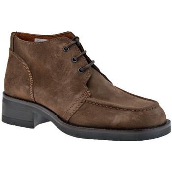 Sapatos Homem Botas baixas Stone Haven  Castanho