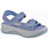 Sapatos Criança Sandálias Fornarina  Azul