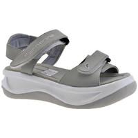 Sapatos Criança Sandálias Fornarina  Cinza
