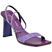 Sapatos Mulher Sandálias Giancarlo Paoli  Violeta