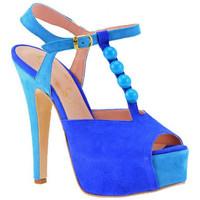 Sapatos Mulher Escarpim Cuomo  Azul