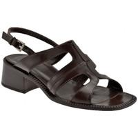 Sapatos Mulher Sandálias Now  Castanho