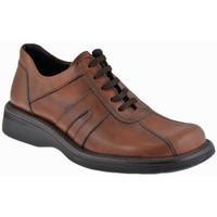 Sapatos Homem Botas baixas Nicola Barbato  Bege