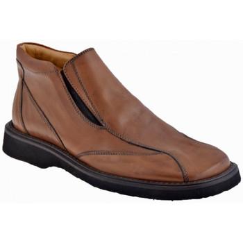 Sapatos Homem Mocassins Nicola Barbato  Castanho