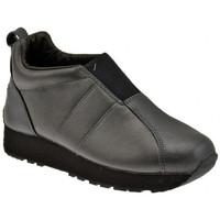 Sapatos Mulher Sapatilhas Superga  Preto
