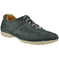 Sapatos Homem Sapatilhas de cano-alto Clarks  Azul