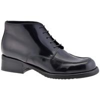 Sapatos Mulher Botas baixas Dockmasters  Preto