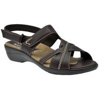 Sapatos Mulher Sandálias Susimoda  Multicolor