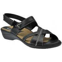 Sapatos Mulher Sandálias Susimoda  Preto