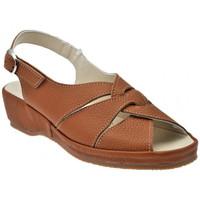 Sapatos Mulher Sandálias Susimoda  Castanho