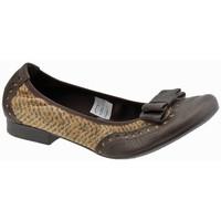 Sapatos Mulher Sabrinas Keys  Multicolor