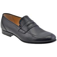Sapatos Homem Mocassins NeroGiardini  Preto