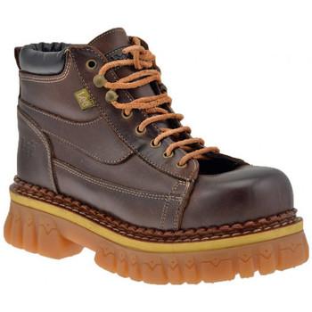 Sapatos Homem Sapatos de caminhada Lee  Castanho