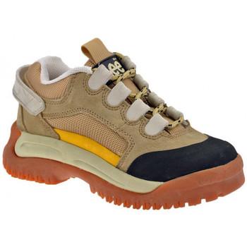 Sapatos Homem Sapatilhas de cano-alto Lee  Bege