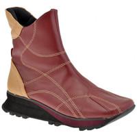 Sapatos Mulher Botins Lee  Castanho