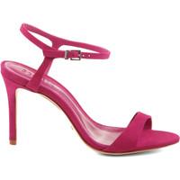 Sapatos Mulher Sandálias Schutz Sandálias True Pink Rosa