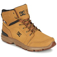 Botas baixas DC Shoes TORSTEIN