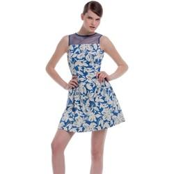 Textil Mulher Vestidos curtos Kocca Vestido Orsang Azul