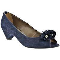 Sapatos Mulher Escarpim Progetto  Azul