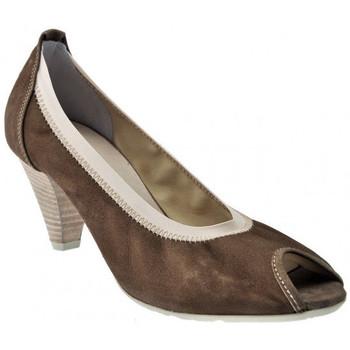 Sapatos Mulher Escarpim Otto E Dieci  Castanho