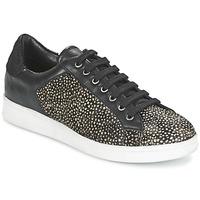 Sapatos Mulher Sapatilhas Maruti NOVA Preto / Branco
