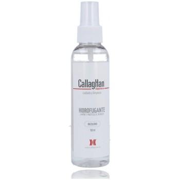 Acessórios Acessórios para calçado CallagHan Callaghan Hidrofugante 84 Impermeabilizante outros