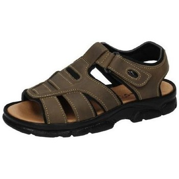 Sapatos Homem Sandálias Dliro  Castanho