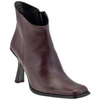 Sapatos Mulher Botins Bocci 1926  Castanho