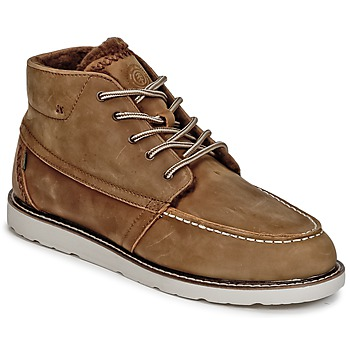 Sapatos Homem Botas baixas Element BANKTON Toupeira