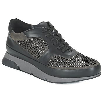 Sapatos Mulher Sapatilhas Luciano Barachini OXFORD Preto / Cinza